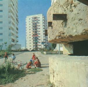 Дот №31, 1980г.
